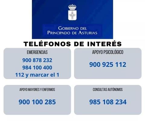 afesasturias.org -  TELÉFONOS DE INTERÉS - AFESA - Asociación de familiares y personas con enfermedad mental de Asturias